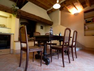 country apartment in a vineyard - chianti tuscany - Greve in Chianti vacation rentals