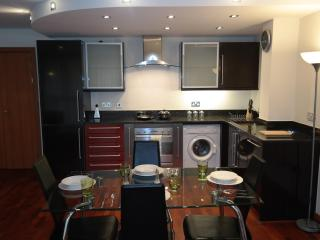 Oasis Apartment Two Bedroom at Canary Wharf - London vacation rentals