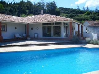 Superb Villa nr.Golf & Beaches - Rio Maior vacation rentals