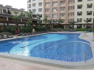 New Condo, 1 Bedroom, Fully Furnished - Luzon vacation rentals