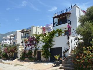 Luxury Hilltop Villa, Kalkan, Turkey - Turkish Mediterranean Coast vacation rentals
