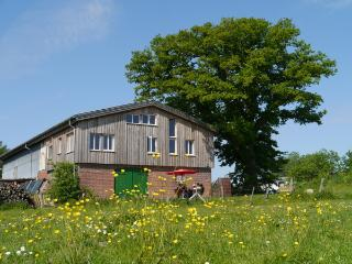 Ecological Appartement Rossee - South - Rendsburg vacation rentals