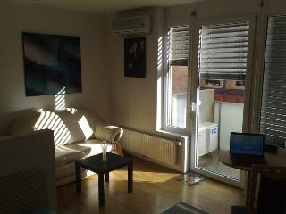 Nice Condo with Internet Access and Elevator Access - Ljubljana vacation rentals