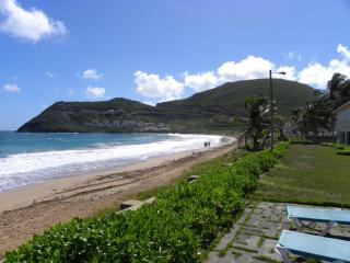 1 bedroom Condo with Short Breaks Allowed in Basseterre - Basseterre vacation rentals