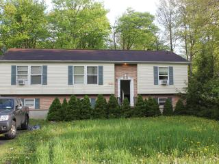 Gorgeous 5 Bedroom House Near Camelback & Casino - Tobyhanna vacation rentals