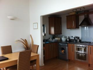 PENTHOUSE APARTMENT IN SWANSEA MARINA TO RENT - Swansea- Gower Peninsula vacation rentals