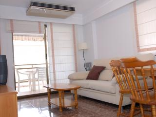 Cozy Studio with A/C and Television - Playa de Gandia vacation rentals