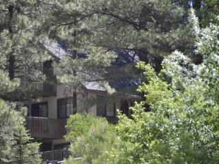 Perfect Family Getaway - Ponderosa Pines Flagstaff - Flagstaff vacation rentals