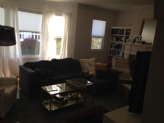 Large Sea Cliff Apartment blocks from the SF sites - San Francisco vacation rentals