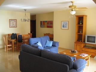 PalmMar Apartment...3 bedrooms - Palm-Mar vacation rentals