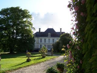 Nice Chateau in Saint-Savinien with Hair Dryer, sleeps 23 - Saint-Savinien vacation rentals