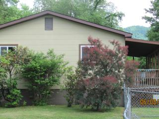 Charming House with Internet Access and A/C - Rosman vacation rentals