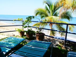 Central Rincon Oceanfront  2 BR/2BA with Dune Deck - Rincon vacation rentals