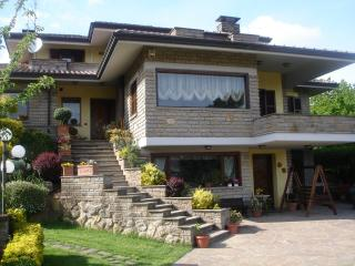 Nice Bed and Breakfast with Internet Access and A/C - Bassano Romano vacation rentals