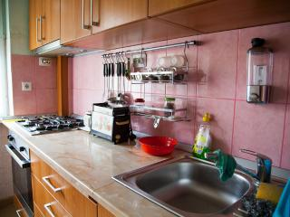Entire Apartment in the city center - Transylvania vacation rentals