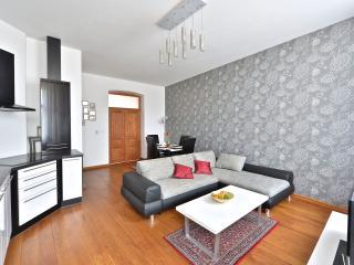 Comfortable 1 bedroom Apartment in Prague - Prague vacation rentals