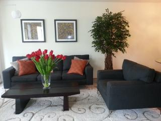 Min 6 mo 2 BR condo central AC *Pool&Spa* near DT - Sunnyvale vacation rentals