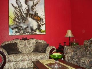 Furnished Clean 2 Br Apt Near Metro,hec,jgh,downtown - Montreal vacation rentals