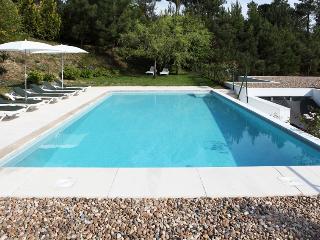Douro Villa - Resende vacation rentals