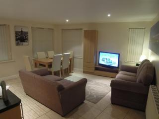 Dinas Apartments No.4 - Liverpool vacation rentals