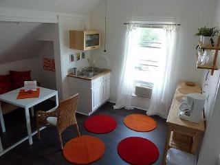 Studio Tampa Home in Fort Myers - Fort Myers vacation rentals