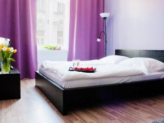 Comfortable Prague Apartment rental with Internet Access - Prague vacation rentals