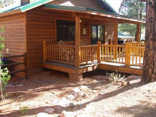 Peaceful Pines Cabin w/ Fenced Yard for Dogs! - Show Low vacation rentals