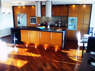 Large modern 130m2 flat overlooking lake&mountains - Tolochenaz vacation rentals