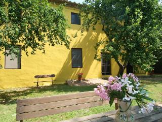 4 bedroom Farmhouse Barn with Dishwasher in Lorenzana - Lorenzana vacation rentals