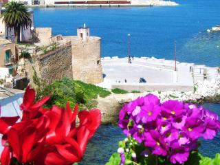 1 bedroom Condo with Internet Access in Castellammare del Golfo - Castellammare del Golfo vacation rentals
