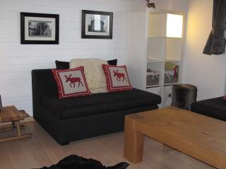 Sunny Chalet with Internet Access and Dishwasher - Saas-Fee vacation rentals