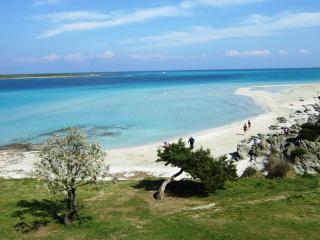 Villino Iris - Stintino vacation rentals