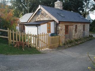2 bedroom Cottage with Satellite Or Cable TV in Llanrhian - Llanrhian vacation rentals