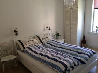 Large, bright Copenhagen apartment near Damhus lake - Copenhagen vacation rentals