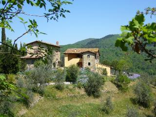 Podere Albereto - San Polo in Chianti vacation rentals