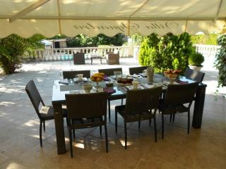 Nice Villa with Internet Access and Dishwasher - Le Tignet vacation rentals