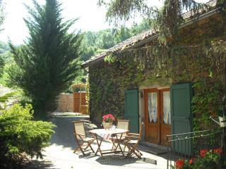 2 bedroom House with High Chair in Albi - Albi vacation rentals