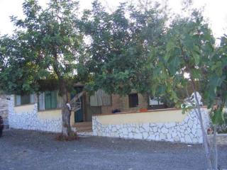 casale rustico con piscina privata - Cassibile vacation rentals