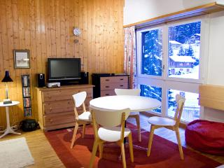 Apartment in a skiing chalet - Anzere vacation rentals
