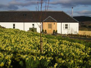 New Steading Cottage - Spittal of Glenshee vacation rentals