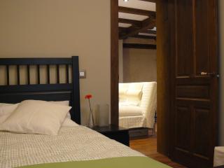 Comfortable 2 bedroom Apartment in Toledo with Internet Access - Toledo vacation rentals