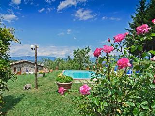 Agriturismo Summer -  Appartamento Tilde - Gallicano vacation rentals