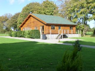 3 bedroom Cabin with Internet Access in Neath - Neath vacation rentals