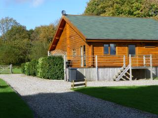 Cedar Lodge ***** - Swansea vacation rentals
