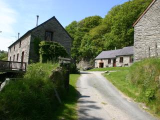 Troedyrhiw Holiday Cottages - Cardigan vacation rentals