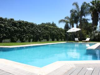 Romantic 1 bedroom San Giovanni la Punta Guest house with Internet Access - San Giovanni la Punta vacation rentals