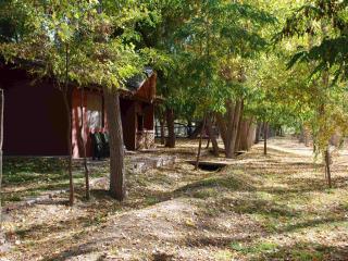 Cabañas El Bosque, Villa 25 de Mayo Cabaña 1 - San Rafael vacation rentals