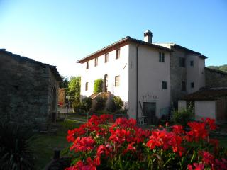 Bright 5 bedroom Rufina Farmhouse Barn with Internet Access - Rufina vacation rentals