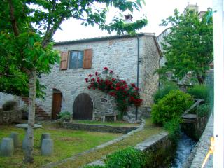 Beautiful 1 bedroom Bed and Breakfast in Santa Fiora - Santa Fiora vacation rentals