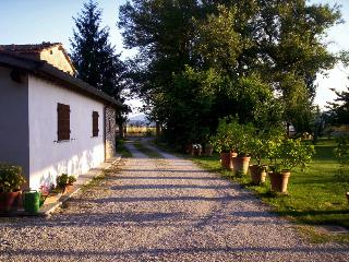 Nice Bed and Breakfast with Garden and Short Breaks Allowed - Sansepolcro vacation rentals